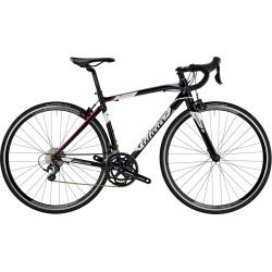 Wilier Luna Tiagra Road Bike 2018